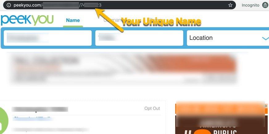 Remove Info From PeekYou FrugalReality-4