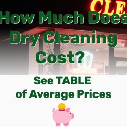 How Much Does Dry Cleaning Cost? See TABLE of Average Prices