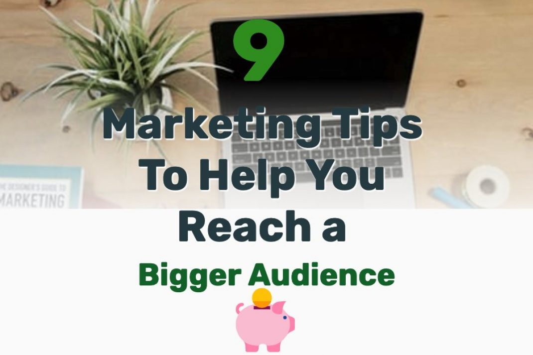 Audience growth strategy - Frugal Reality